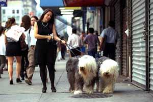 En las calles de Chelsea.